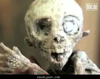 bayi alien